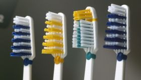 Four coloured toothbrushes.